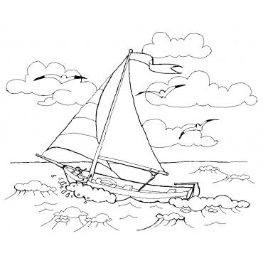 Little white boat