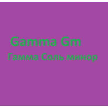 Gamma Gm